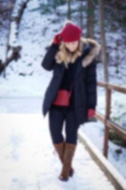 nieve4.jpg