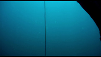 El reflejo del mamifero Directed by Flavia Martinez 27 min (Cine planeta Film festival, Doqumenta film festival, Monterrey international film festival, Shorts México, FICM, Etiuda & Anima Poland Film Festival)  Winner Jury award Doqumenta Film festival
