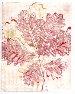 Red and Cream Oak Branch Print