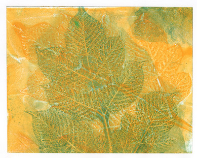 Blue and Yellow Beech Branch Print