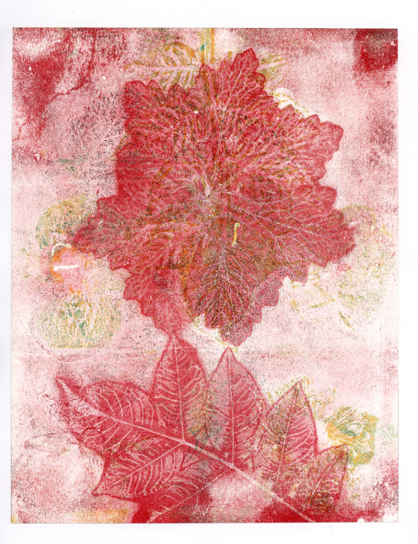Abstract Green and Red Leaf Print