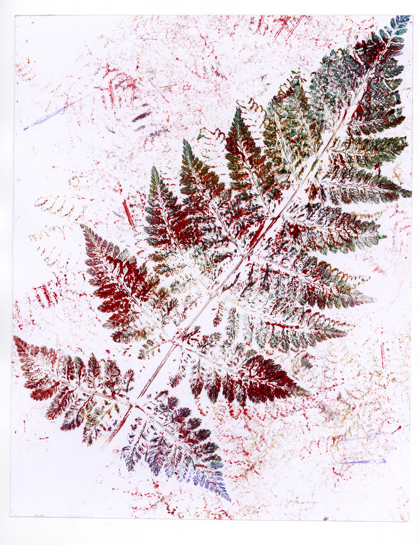 White, Red and Green Fern Print