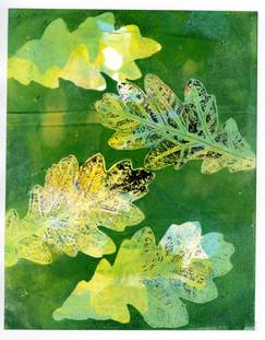 Green and Yellow Oak Leaf Print