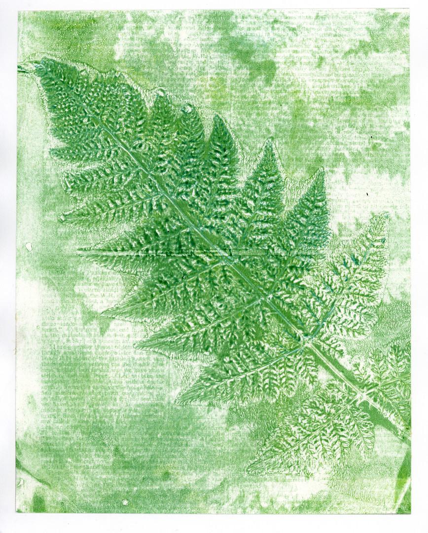 Green Fern print