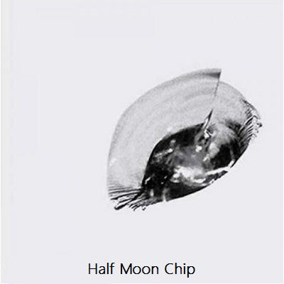 Half Moon Chip.jpg