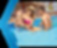 Albercas y Equipos Paradise - Equios y A
