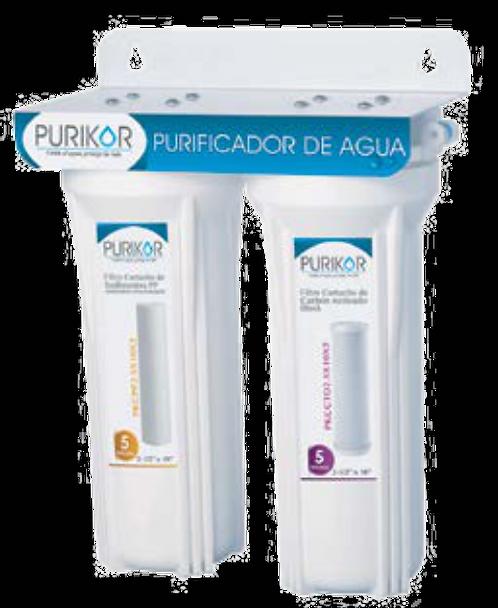 Purificacion POU - PKF-2