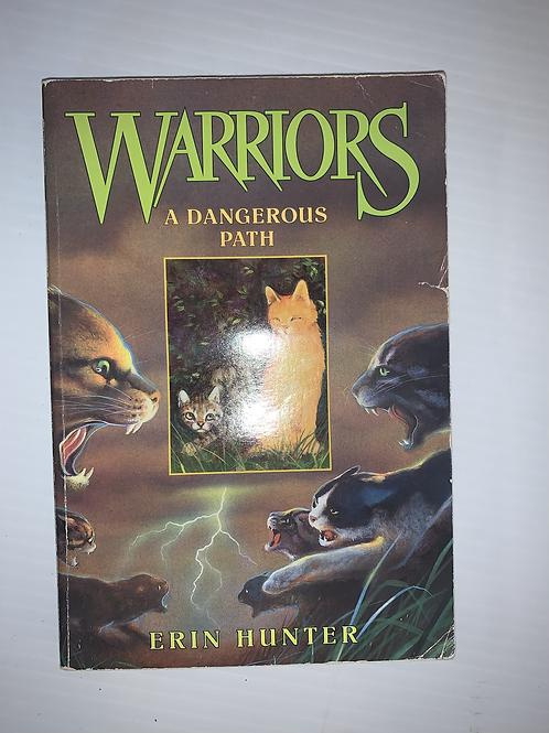 Warriors - A Dangerous Path