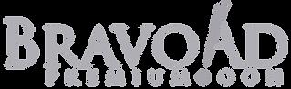 logo Bravo ad.png