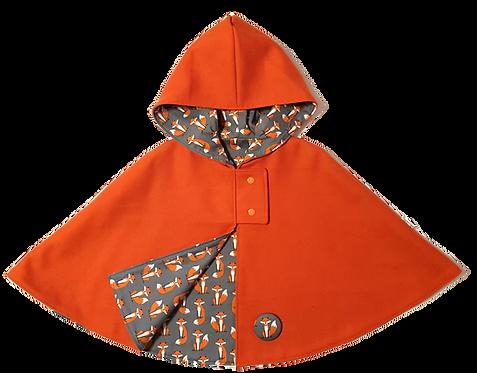 Orange foxes Cape