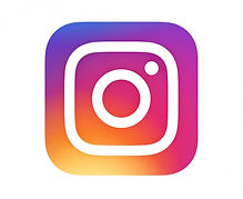 Instagram Icon Logo Chic and Fame Microblading Winterthur Zurich
