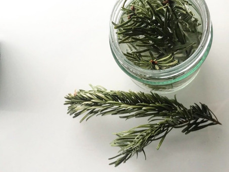 8 creative ways to use pine needles.