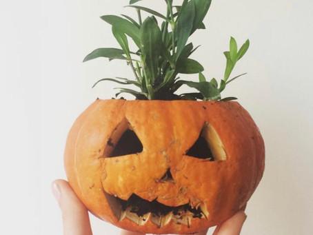 Can we make Halloween green again?
