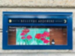 IMG_7949.Bellevue%20Apotheke_edited.jpg