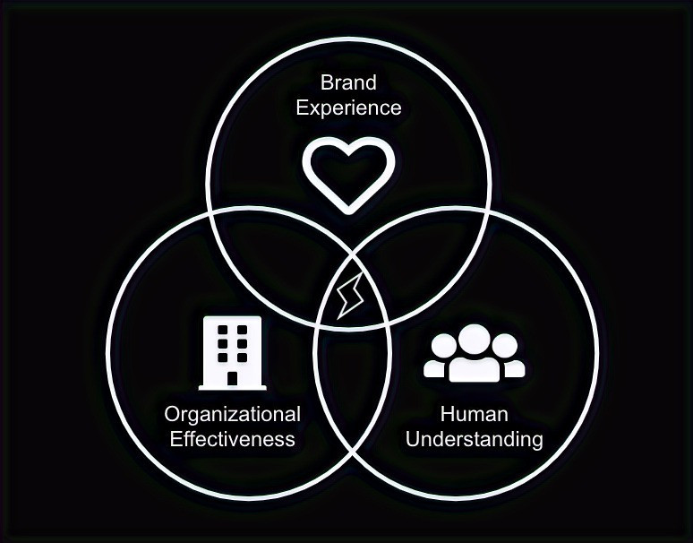 Venn diagram of Spark Consulting Group's approach to creating and capturing value. The diagram highlights three areas: human understanding, organizational effectiveness, and brand experience.