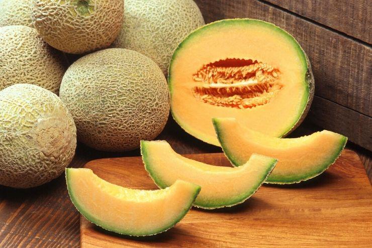 owoce melona