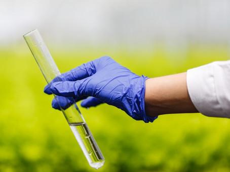 To ile tych pestycydów w naszych roślinkach i czy już nie da się ich zjeść?