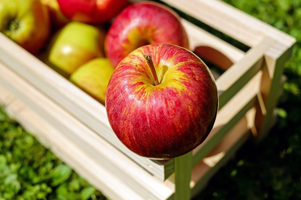 właściwości lecznicze jabłek