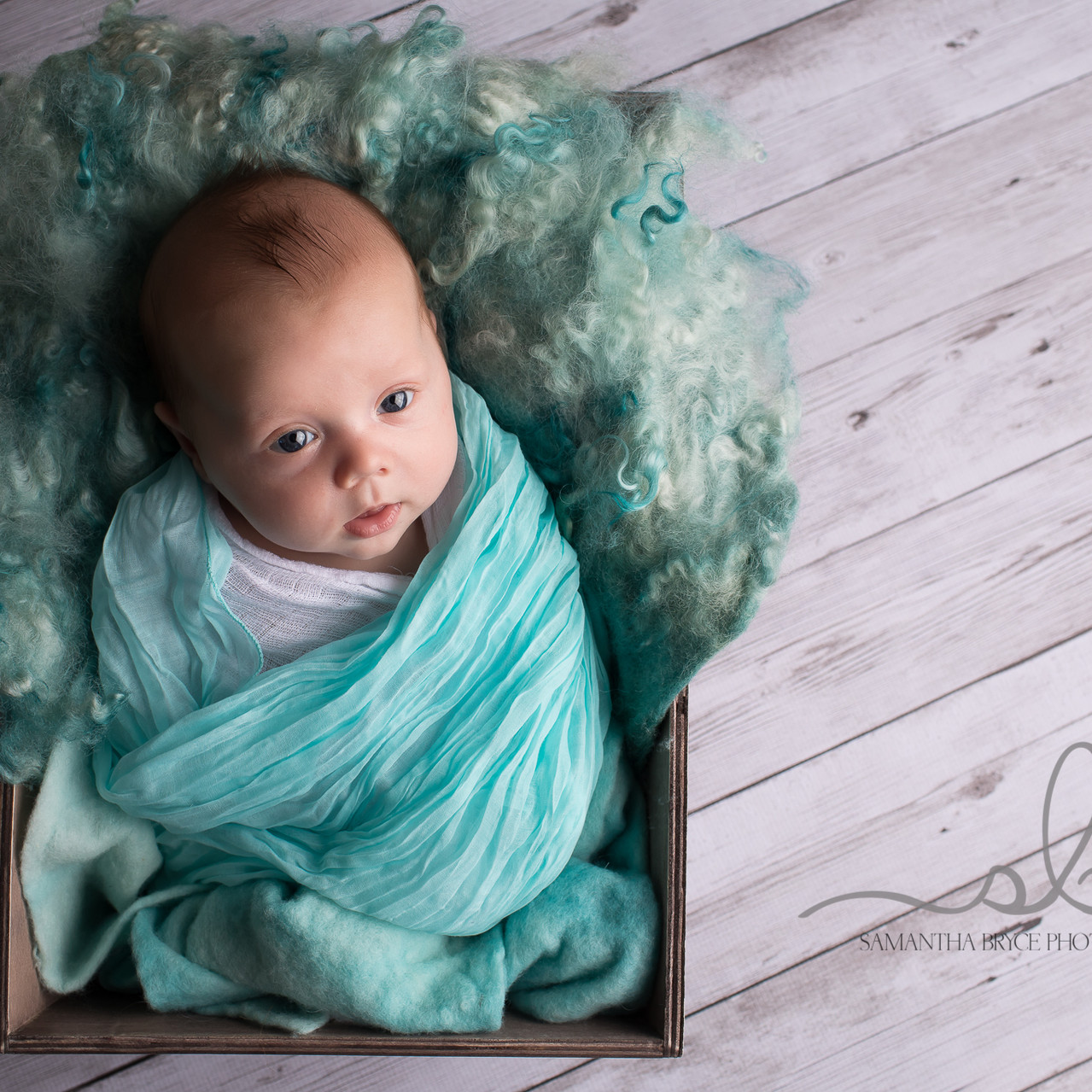 baby boy newborn photography sydney