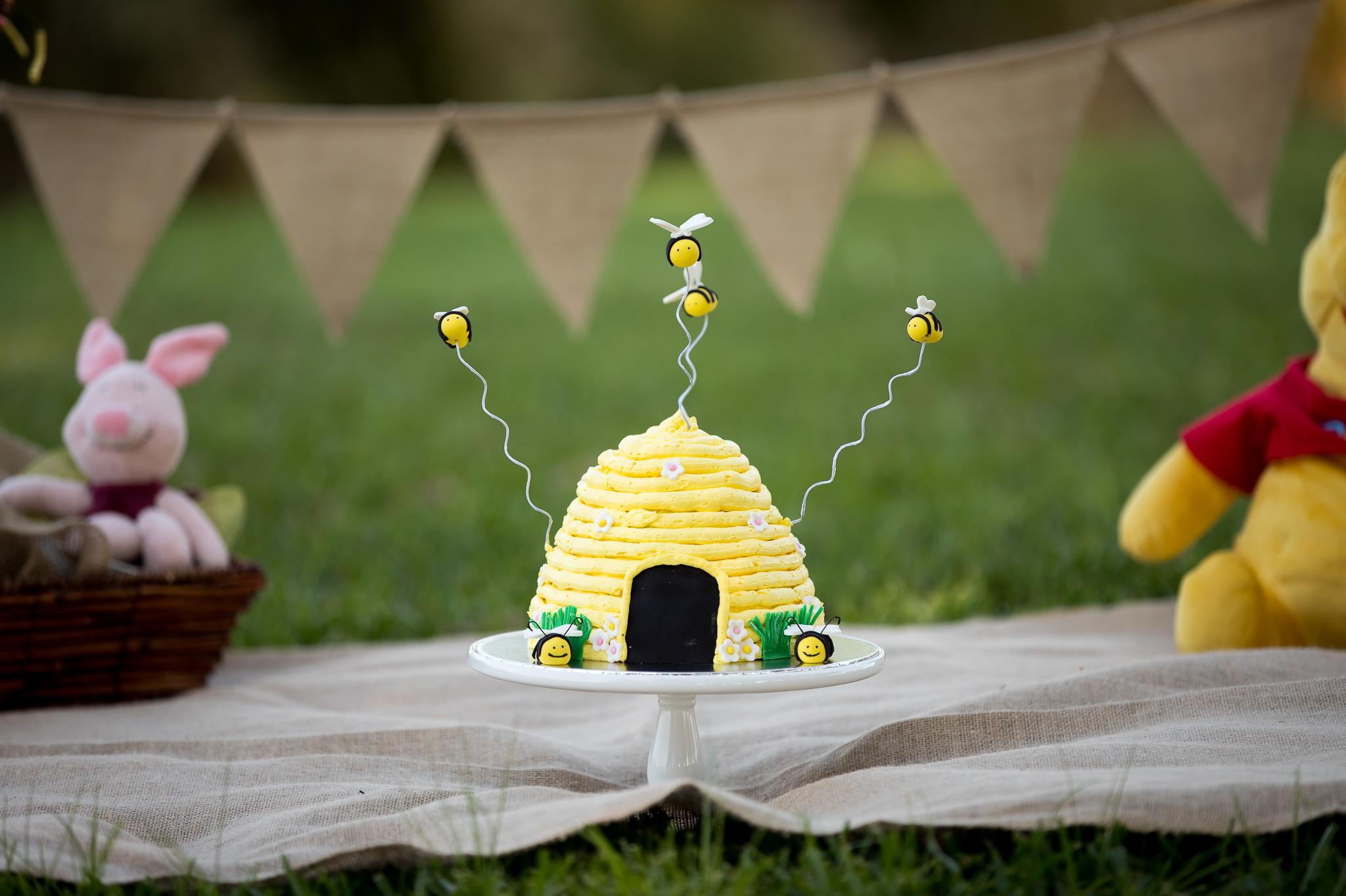 Cake Smash Samantha Bryce Photograph