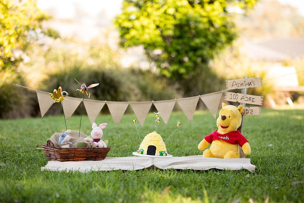 Winnie the Pooh Cake Smash photography Sydney