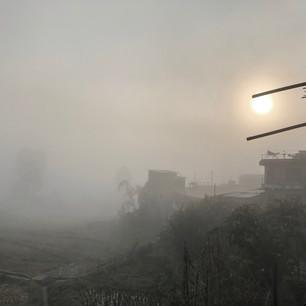 Morning fog in winter