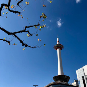 Kyoto Tower as winter blossoms into spring