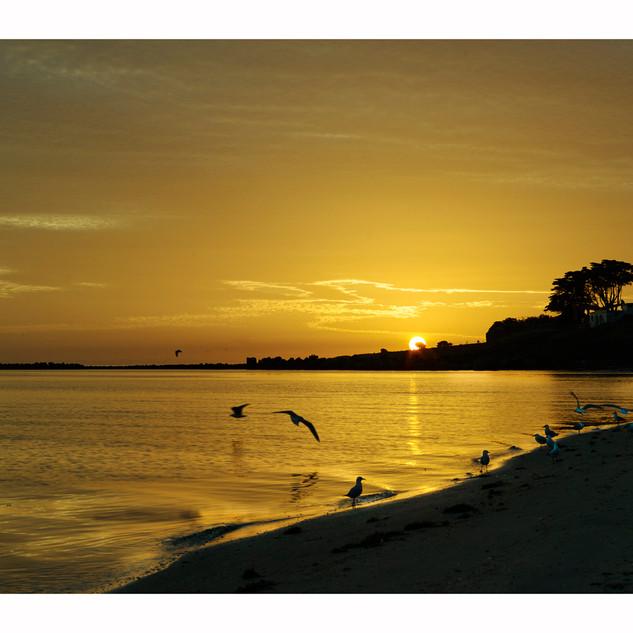 Port Sunrise in Port