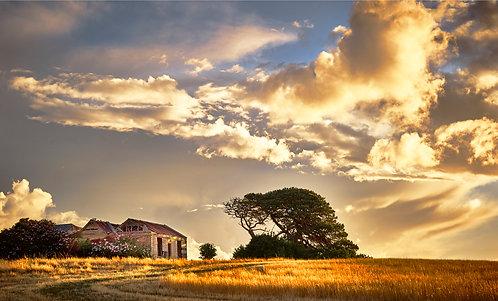 Historical Farm House in Bellarine