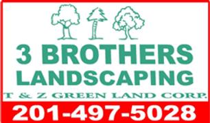 3 Bros green (1).png