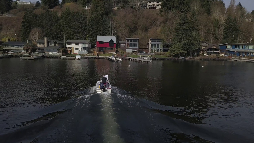 Milfoil Removal - Lakescapers