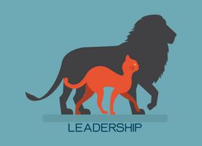 Le leadership : en avoir ou pas ?