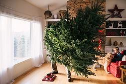 Einen Weihnachtsbaum einrichten