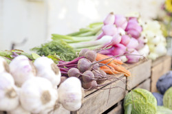 Vegetables in the Farmers Market