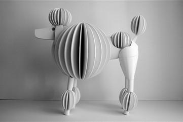 Standard Poodle, 2008
