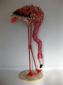 Paper Flamingo, 2009