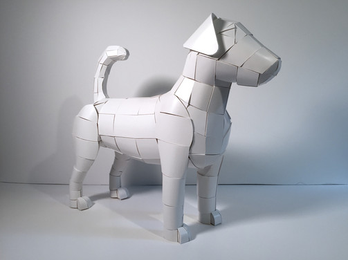 Jack Russell Terrier, 2014