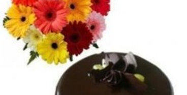 The Gerbera Daisies and Chocolate Cake Combo