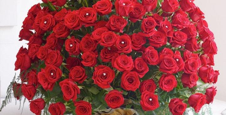 Alluring 500 Roses