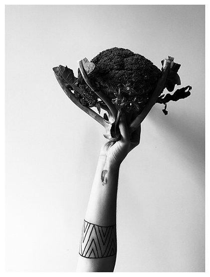Ai meu brócolis 15X21