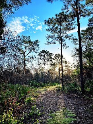 UCF Trail.jpg