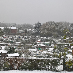 cold winters day - 2016-crop-u163727.png
