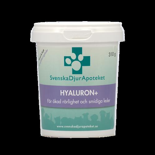 Hyaluron+