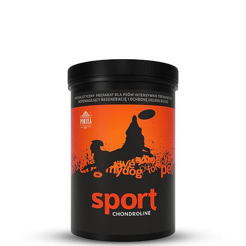 Sport 350g - pulver