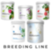 breedingline.png