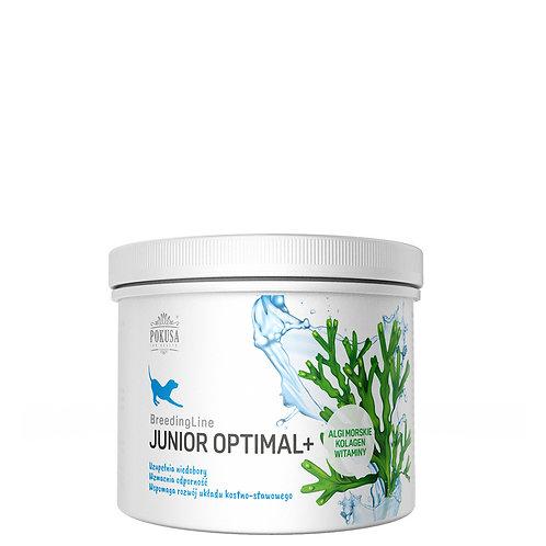Junior Optimal + 300g pulver