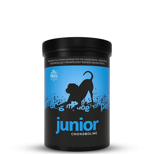 Junior 350g - pulver