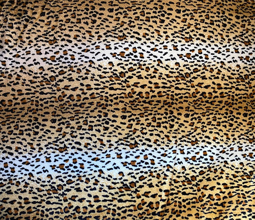 100x70 cm Leopard