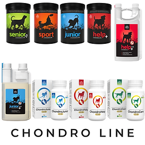 Chondro Line.png