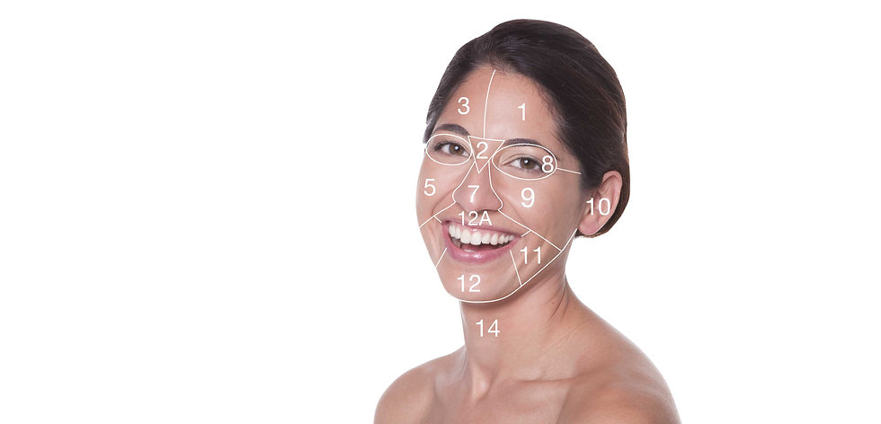 face-mapping.jpg